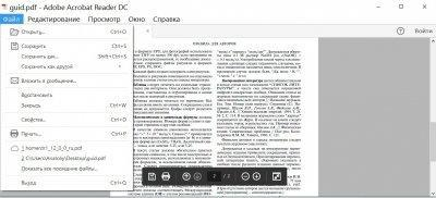 Adobe Reader Image 4