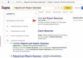 Adguard for Yandex Browser Image 4