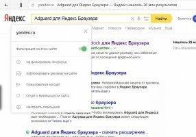 Adguard for Yandex Browser Image 5